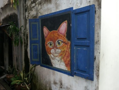 'The Waiting Cat in the Window' on lane off Canon Street